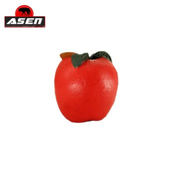 terc-asen-sports-apfel